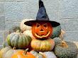 Halloween In Hat