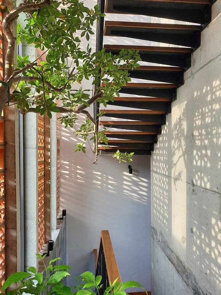 Ngôi nhà xanh mát ở Đà Nẵng, bên trong như 1 thế giới khác mà thời gian trôi chậm lại