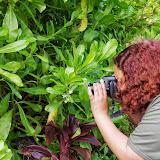 06-26-13 National Tropical Botantial Gardens - IMGP9455.JPG