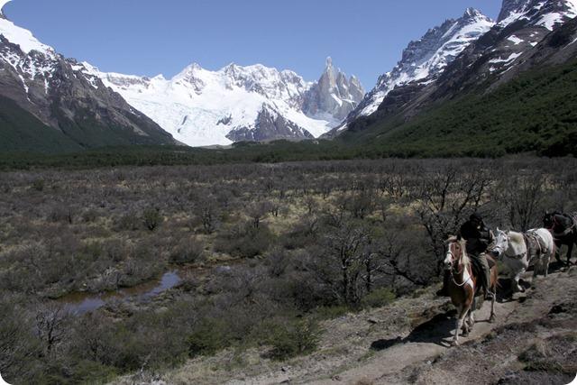 el-chalten-trail-horses-1000