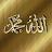shamim pasha avatar image