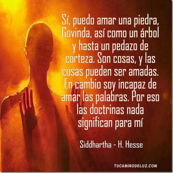 - Siddhartha - H. Hesse