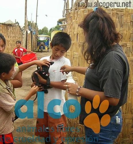Asistencia Hualcara Cañete terremoto 2007 (17)