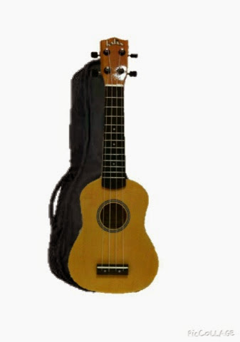 Ben 39 s ukulele house for Housse ukulele