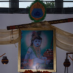 Janmashtmi Celebration 2011-12