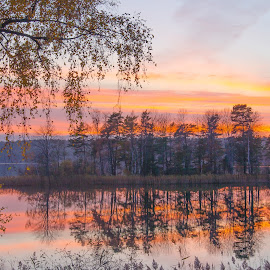 A small lake with an island in it by Roger Carlsson - Landscapes Waterscapes ( reflections, island, water, lake, sundown )