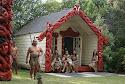 maori's.jpg