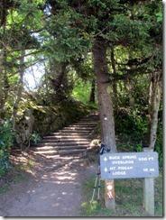 Trailhead to Mt Pisgah Lodge(MP407.7)