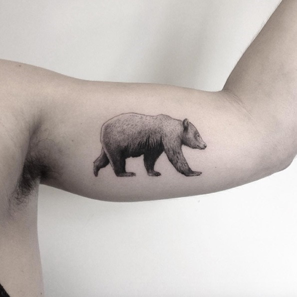Perfeito esse urso