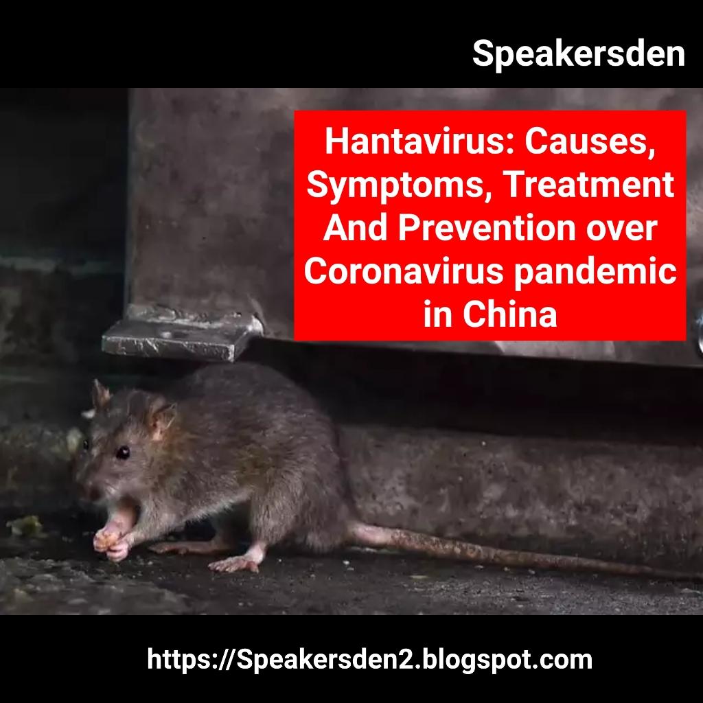 Hantavirus: Causes, Symptoms, Treatment And Prevention over ...