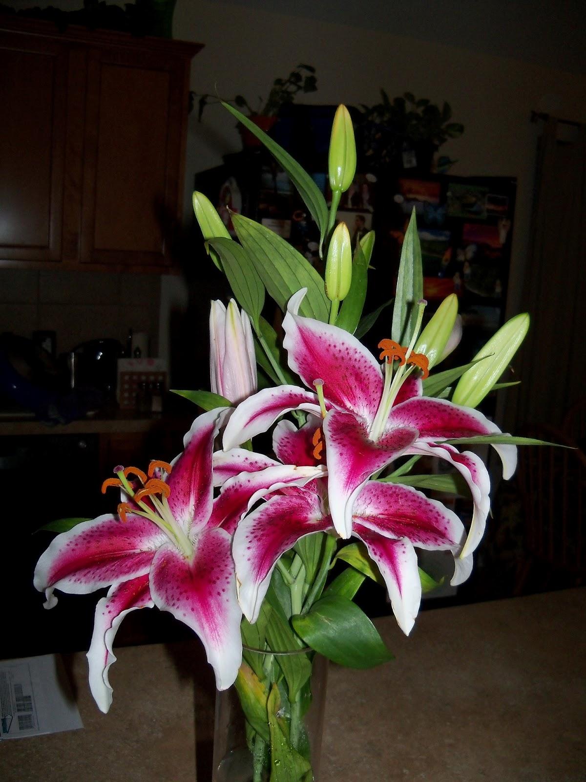 Bouquets - 101_0103.JPG