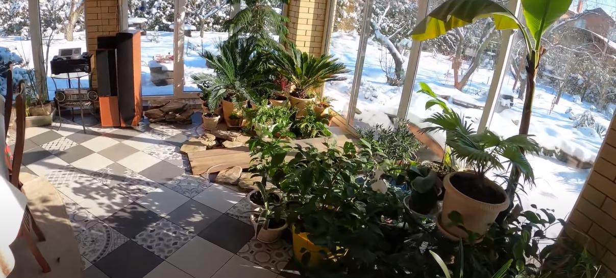 зимний сад дома