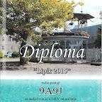 diploma_lipik.jpg
