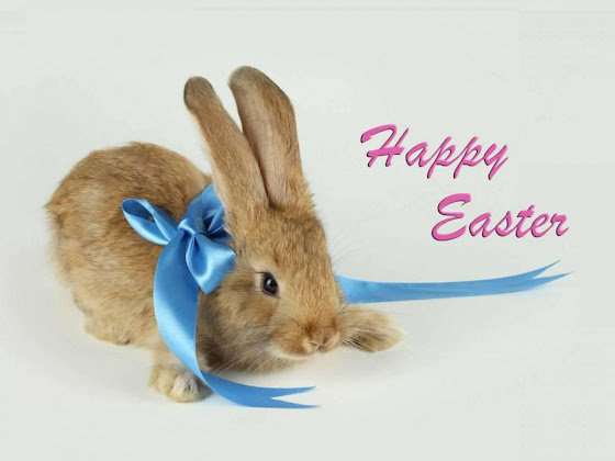Uskrs besplatne pozadine za desktop 1280x960 slike čestitke blagdani zec free download Happy Easter
