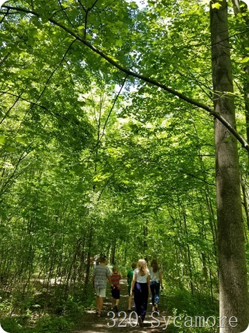 sacred grove walking