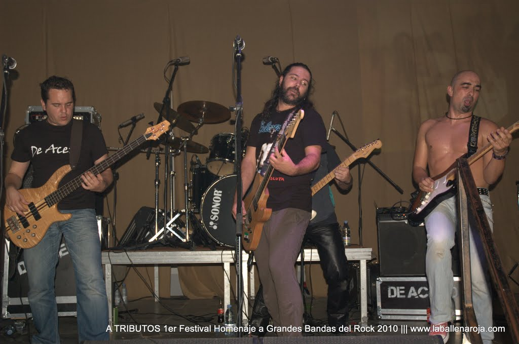 A TRIBUTOS 1er Festival Homenaje a Grandes Bandas del Rock 2010 - DSC_0140.jpg