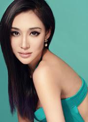 Fan Jinlin China Actor
