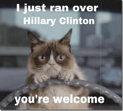 ran over hillary cat