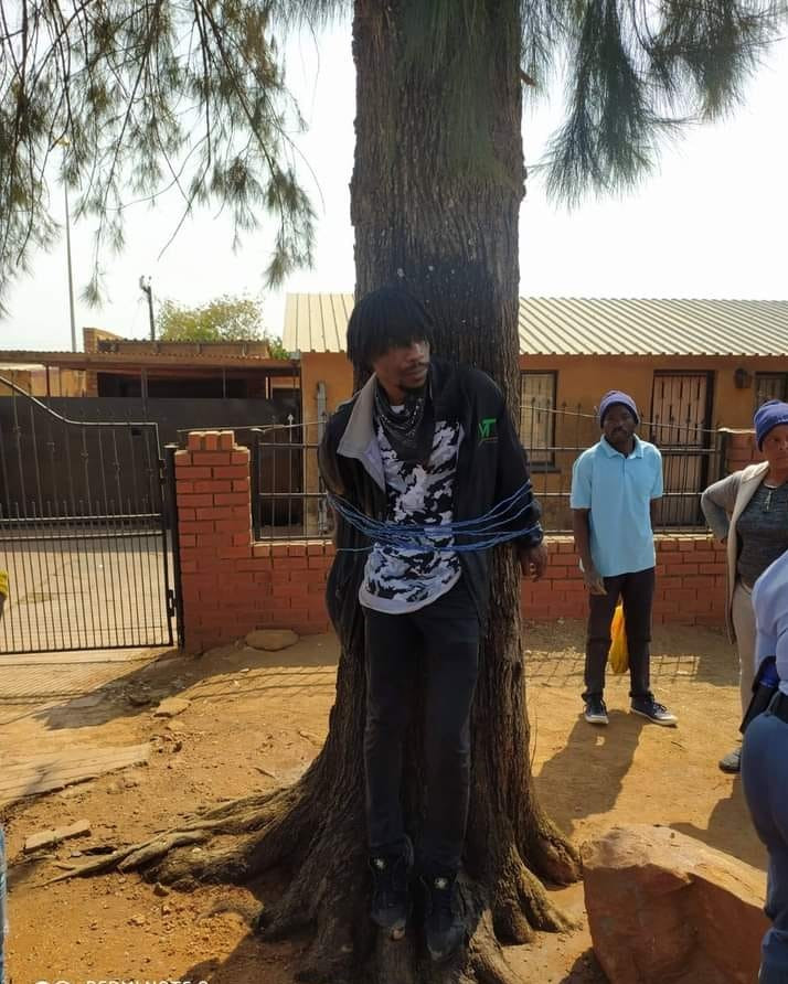 Man beaten and tied to a tree for stealing money from his grandmother