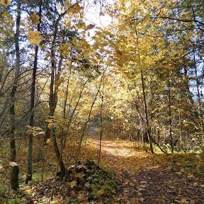 Cirulisi Trails (Oct. 18)