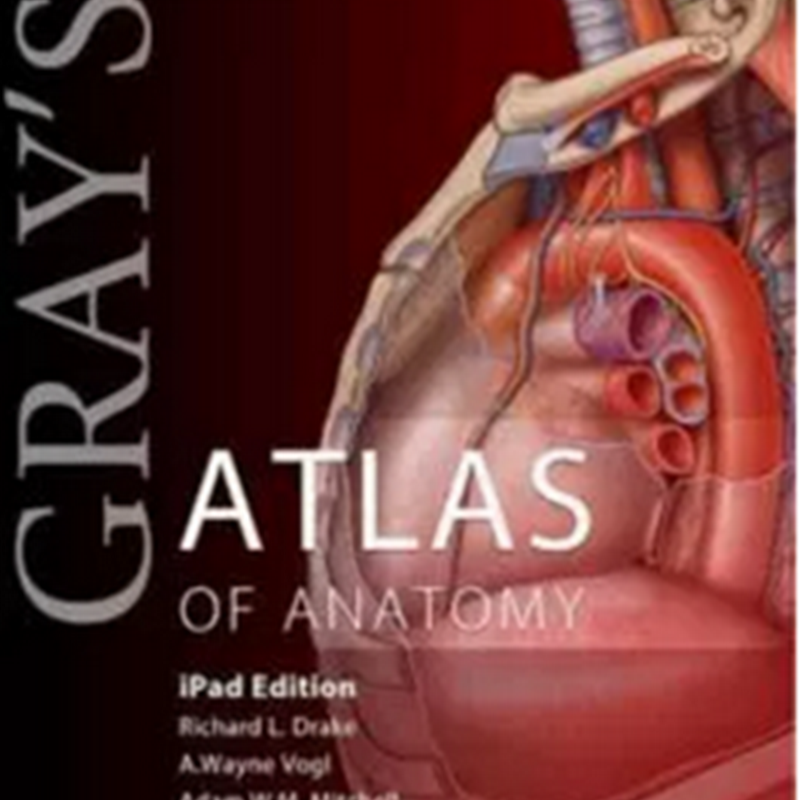 Gray's Atlas of Anatomy, 1e (Gray's Anatomy) 1st Edition