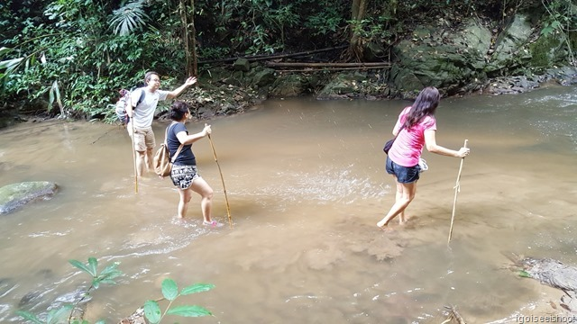 Jungle trekking at Chiang Dao from the Treehouse Hideaway