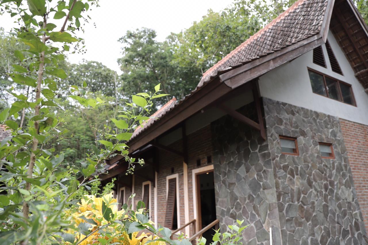 Eloknya Hutan Wanagama Yang Jadi Lokasi Karantina Covid