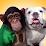 Pankun and James's profile photo
