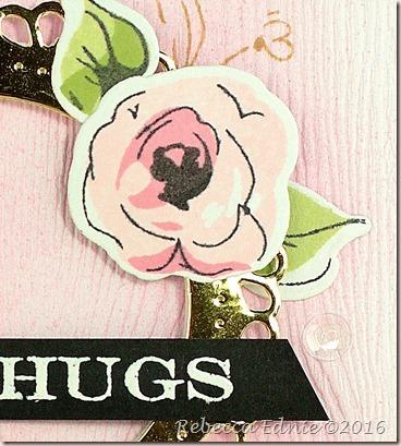 rose hugs2