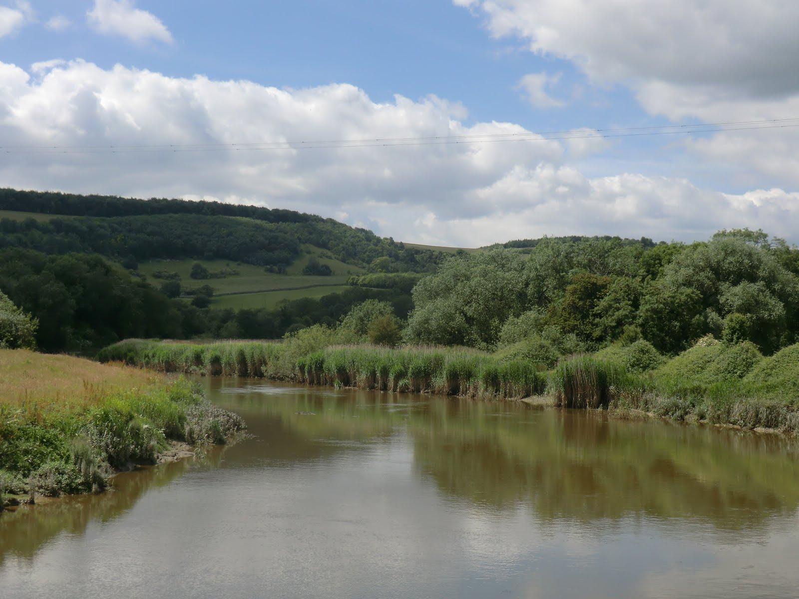 CIMG8834 River Arun at South Stoke