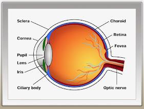 Obat Mata Silinder