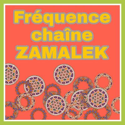 La fréquence de la nouvelle chaîne Zamalek 2020, qui diffuse tous les matchs de la Ligue égyptienne sur Nilesat