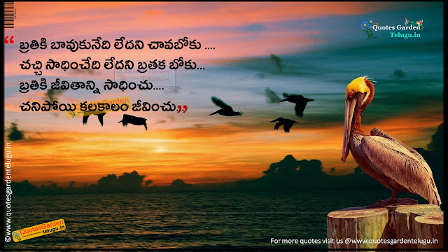 Daily telugu good evening quotes