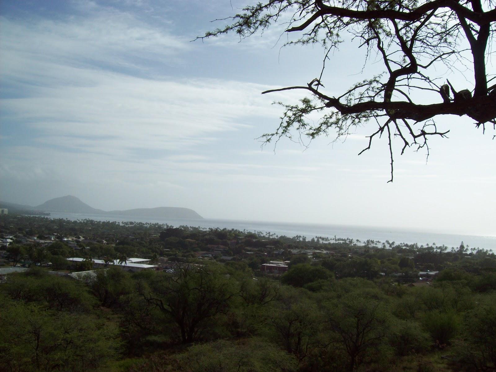 Hawaii Day 2 - 100_6562.JPG