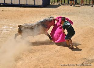 018-peña taurina linares 2014 046.JPG