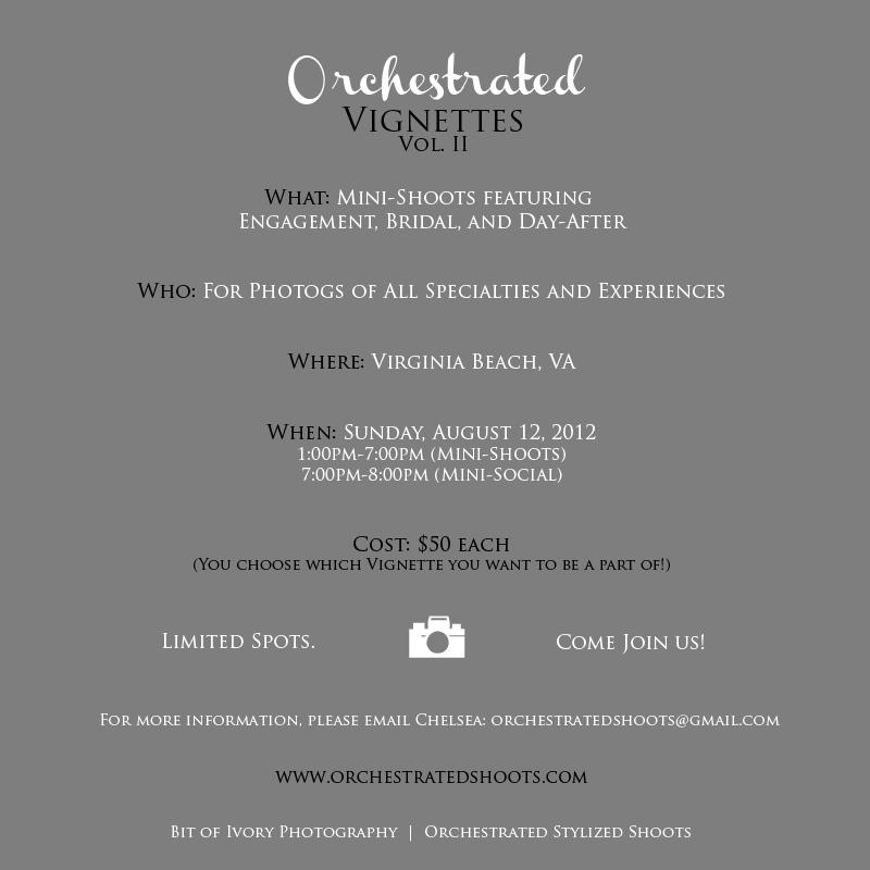 Orchestrated Stylized Shoot in Virginia Beach August 12 2012