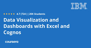 Data Visualization and Dashboards with Excel and Cognos review