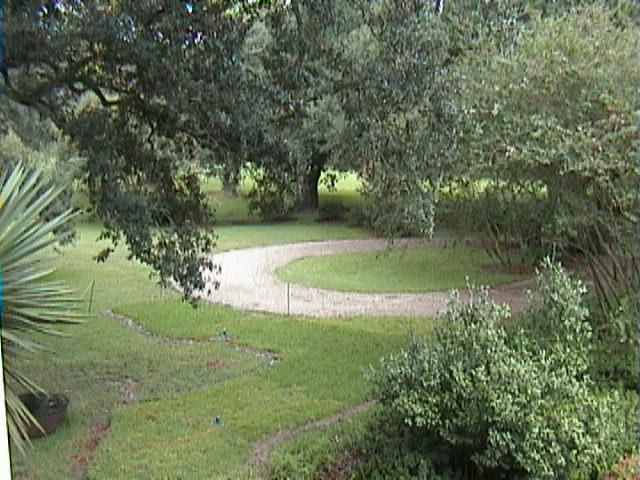 1360A_Southern_Mansion_Garden_-_New_Orleans