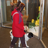 Jonge Hond centrum Emmen - 2012-04-01%2B039.JPG