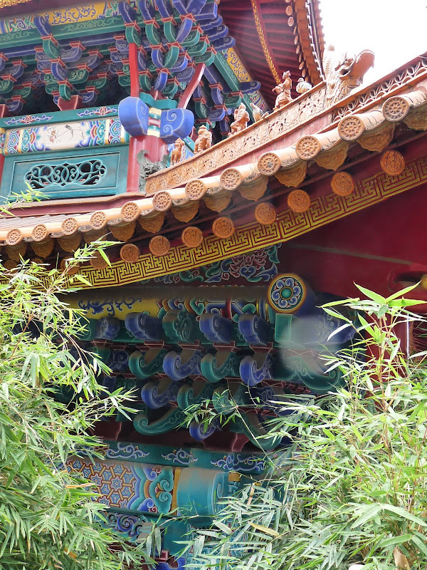 Chine .Yunnan . Lac au sud de Kunming ,Jinghong xishangbanna,+ grand jardin botanique, de Chine +j - Picture1%2B226.jpg
