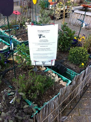 urban gardening urbaner gartenbau minerva 39 s gartenforum. Black Bedroom Furniture Sets. Home Design Ideas