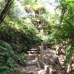 Climbing up to the Gordon Falls park (95479)