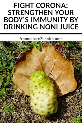 The Potential Health Benefits of Noni Juice