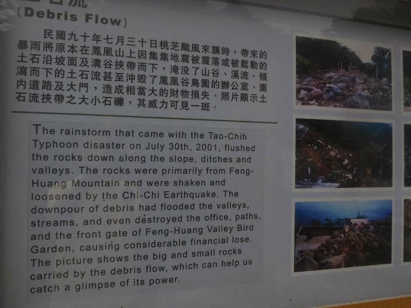 TAIWAN.Dans la région de Nantou, au centre de Taiwan - P1100279.JPG
