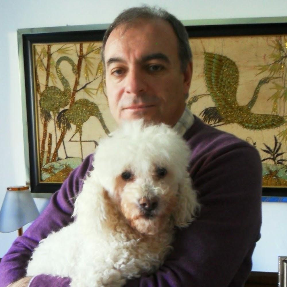 Fabrizio Ciampi avatar