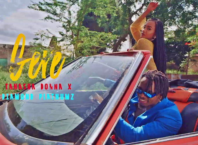 VIDEO | Tanasha X Diamond Platnumz – Gere| Download new song