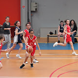 basket 199.jpg