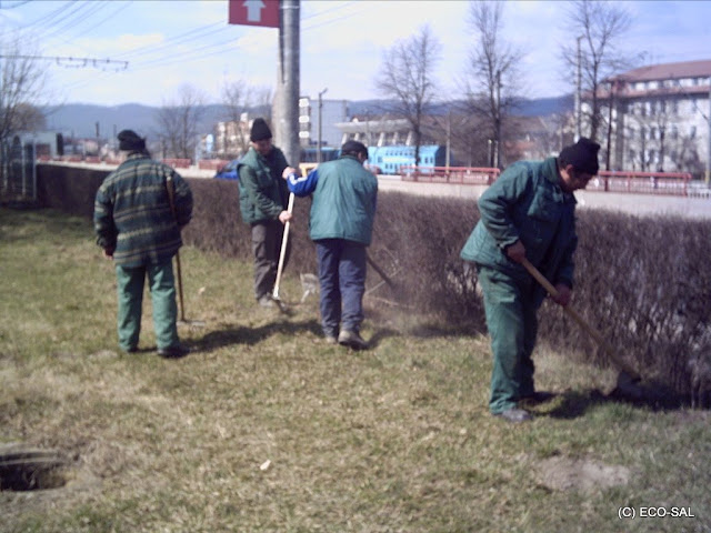 Curăţenia de primăvară 2009 - PICT0154.JPG