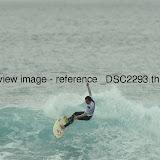 _DSC2293.thumb.jpg