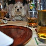 Clubabend Homöopathie am Hund 2014-03-18 - DSC_0013.JPG